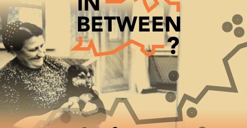 cover image of In Between? seminar 2016