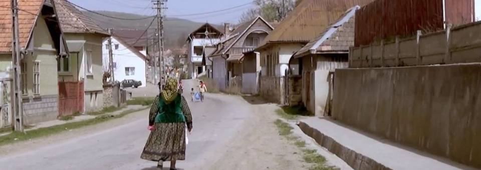Photo of the publication In Between? Transylvania